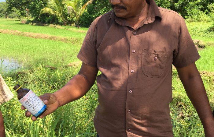 bottle of pesticide in field