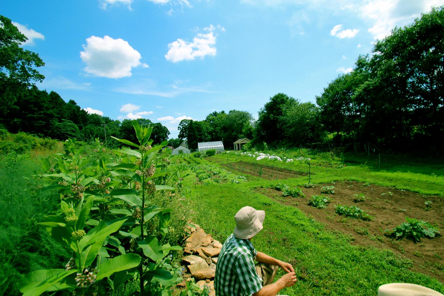 Spring Valley Student Farm