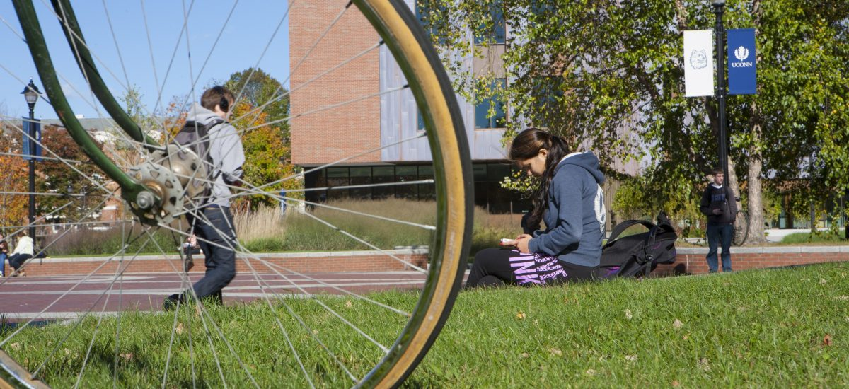 A student views her iPhone outside the Homer Babbidge Library  with Oak Hall in the background.on Oct. 12, 2012. (Sean Flynn/UConn Photo)