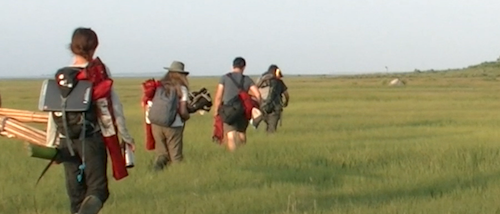 Students in a field ornithology course