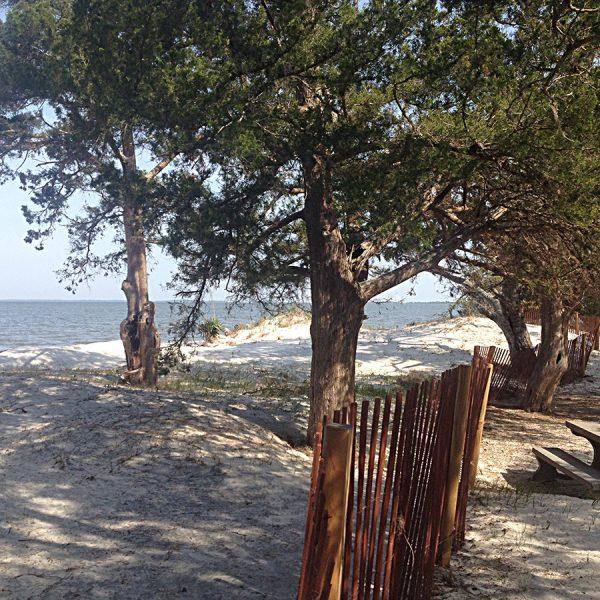 Jekyll beach
