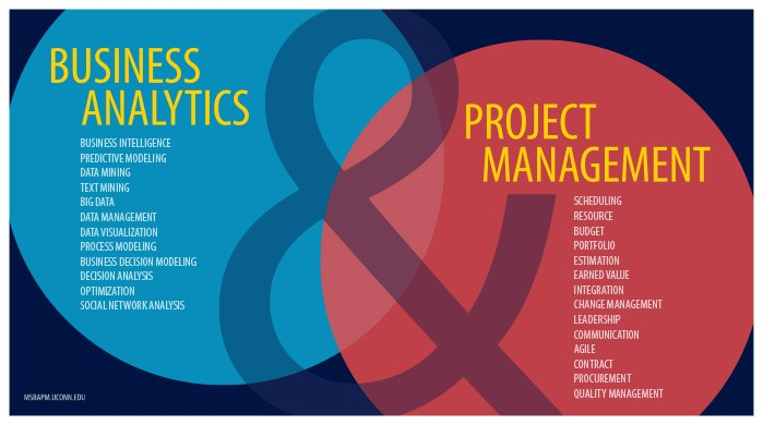 Business Analytics & Project Management (keywords)