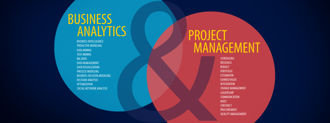 Business Analytics & Project Management