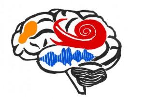 brain_logo_color_blue