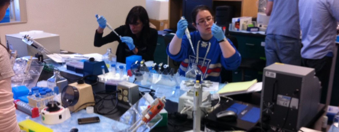 Applied Genomics students prepare samples during the amplicon sequencing module