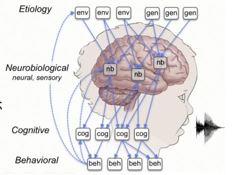 igert-brain-figure