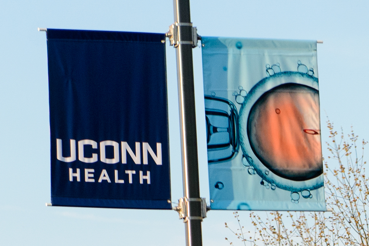 Cell image, UConn Health