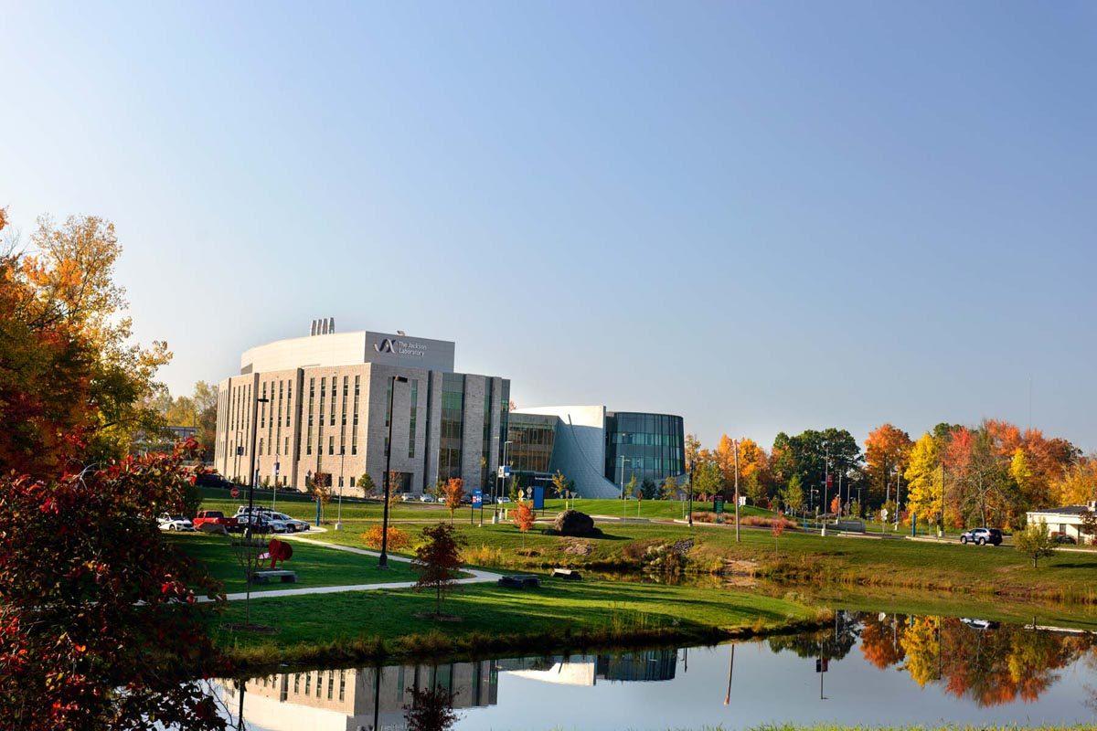 UConn Health main campus, fall 2016. Photo by Janine Gelineau.